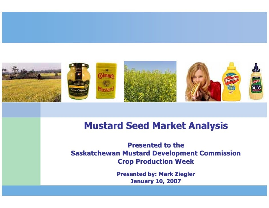 Mustard Seed Market Analysis                             Presented to the               Saskatchewan Mustard Development C...