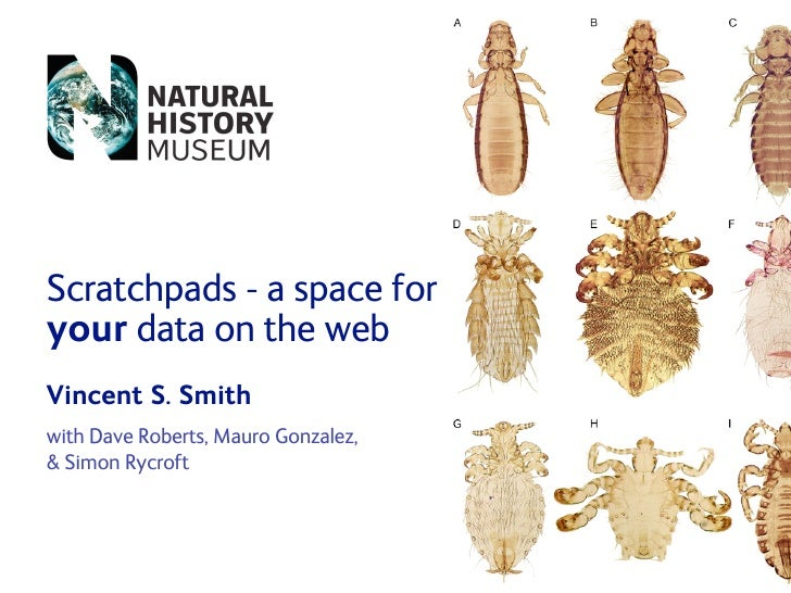 Scratchpads - a space for your data on the web Vincent S. Smith with Dave Roberts, Mauro Gonzalez,  Simon Rycroft