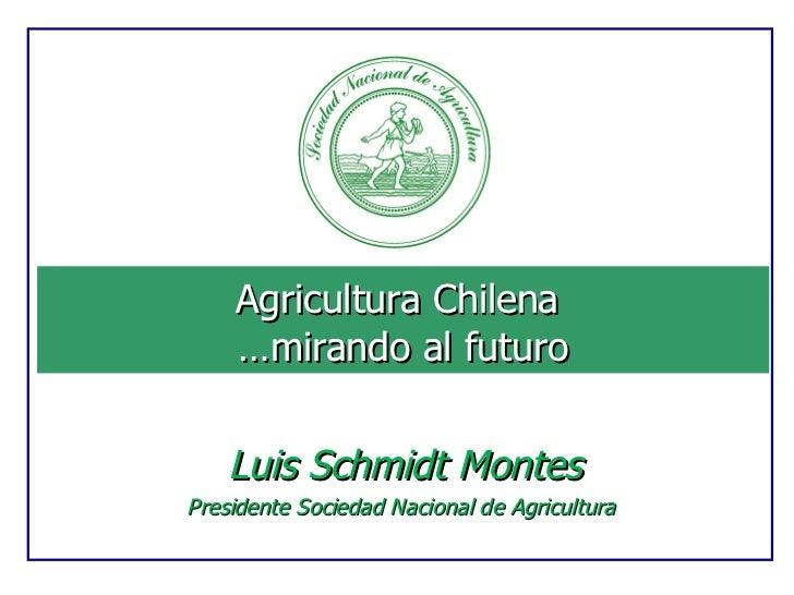 Agricultura Chilena  …mirando al futuro Luis Schmidt Montes Presidente Sociedad Nacional de Agricultura