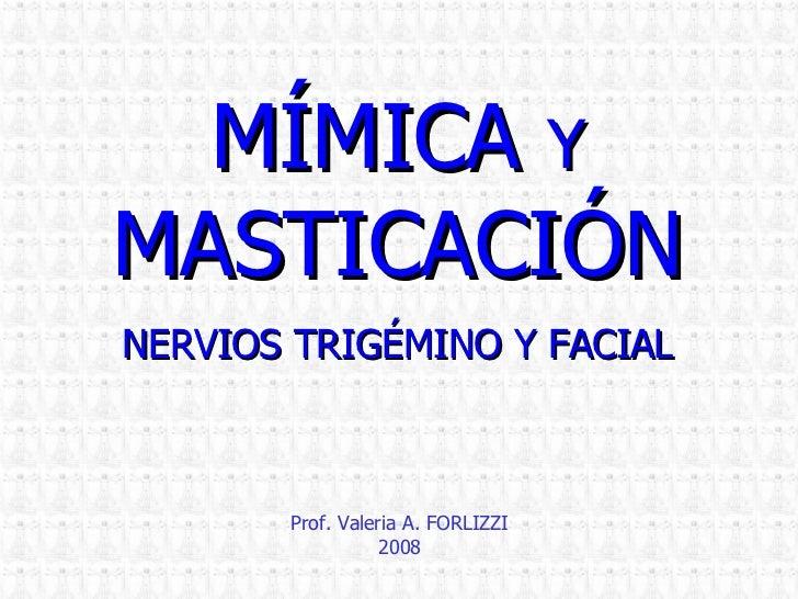 2008 Mimica Masticacion