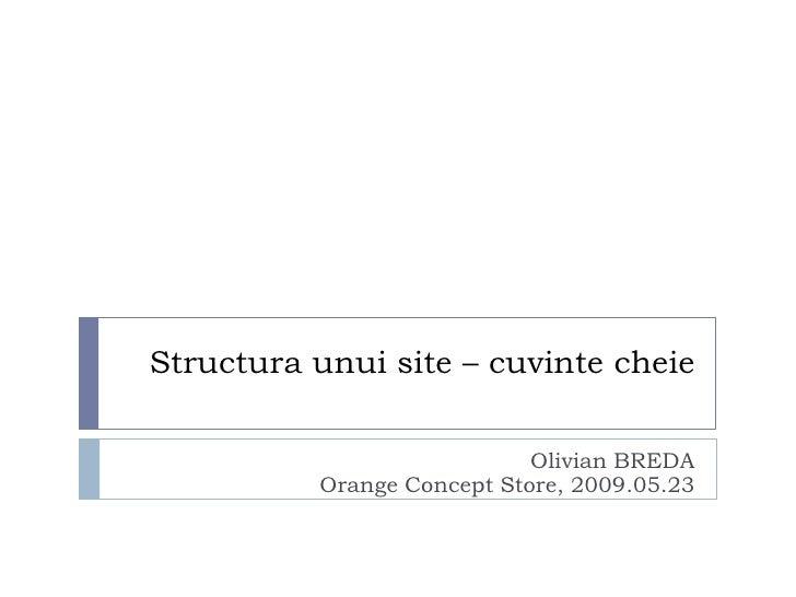 Structura unui site – Cuvinte cheie (Olivian Breda)