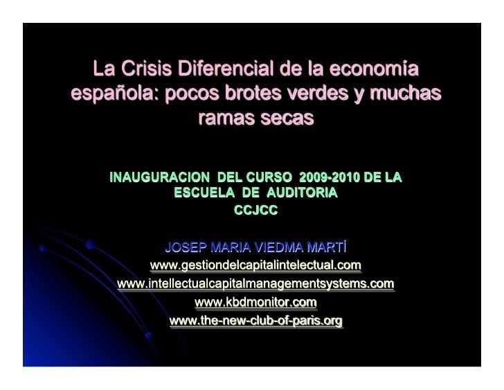 La crisis de la Economía Española. POcos brotes verdes y muchas ramas secas. Colegio Censores Cuentas