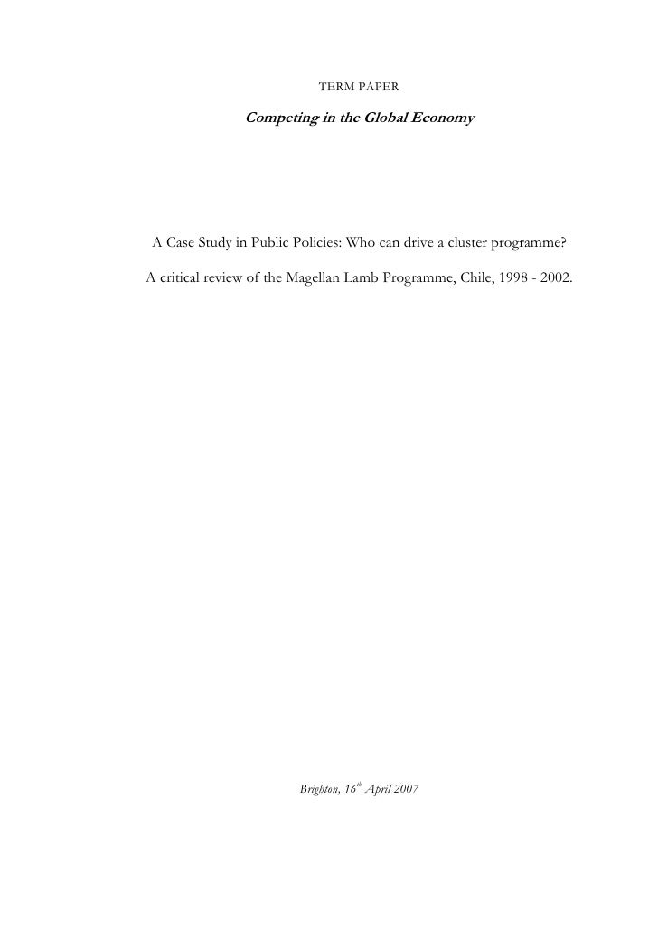TERM PAPER                 Competing in the Global Economy      A Case Study in Public Policies: Who can drive a cluster p...
