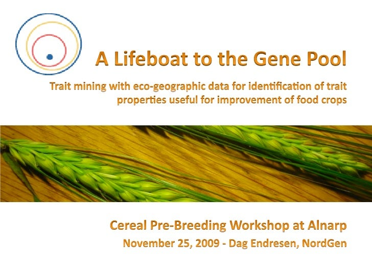 Trait data mining at European pre-breeding workshop at Alnarp (25 Nov 2009)