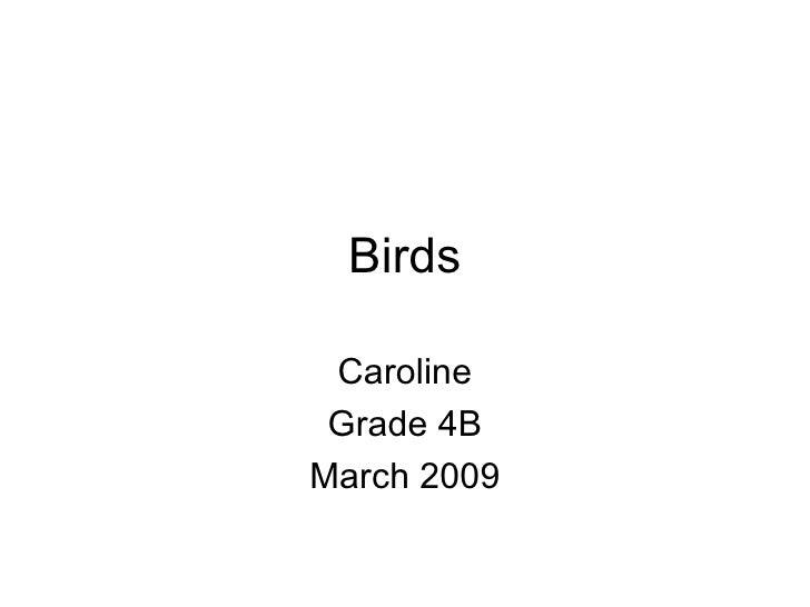 Birds Caroline Grade 4B March 2009