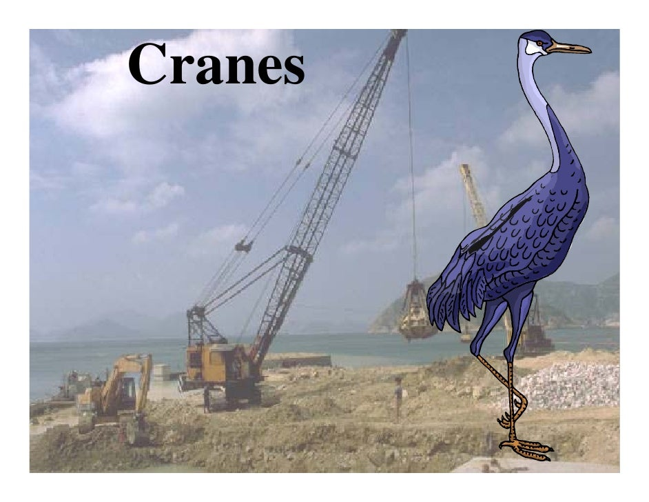 2009 Face Conference Orosha Cranes Wooley