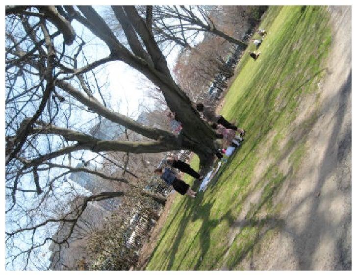 Spring Equinox 2010: A Walk In The Park (Boston Common)