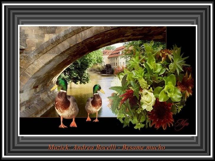 Muziek: Andrea Bocelli - Besame mucho