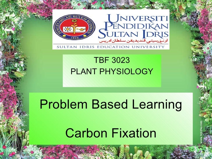 Problem Based Learning Carbon Fixation TBF 3023 PLANT PHYSIOLOGY