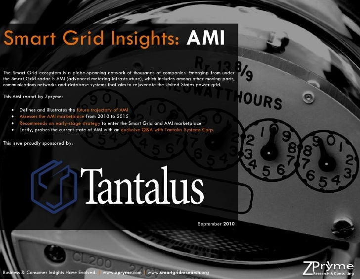 Advanced Smart Meter (AMI) Market Report 2010 by Zpryme [Tantalus Systems Corp. Sponsored]