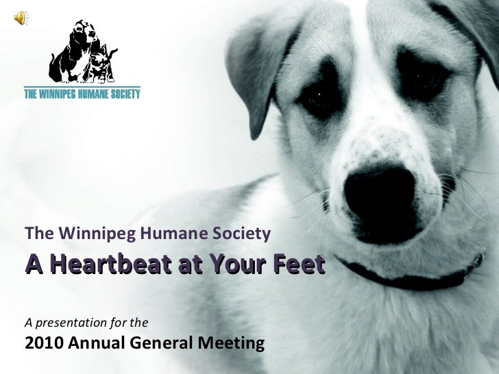 The Winnipeg Humane Society A Heartbeat at Your Feet A presentation for the 2010 Annual General Meeting