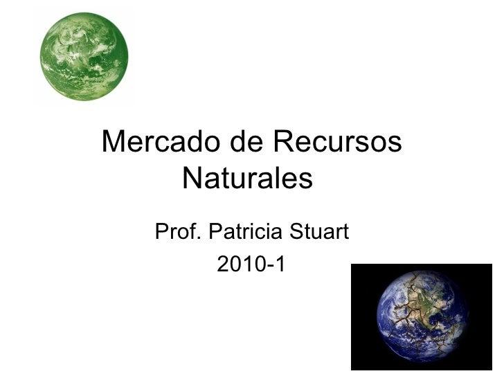 Mercado de Recursos Naturales  Prof. Patricia Stuart 2010-1