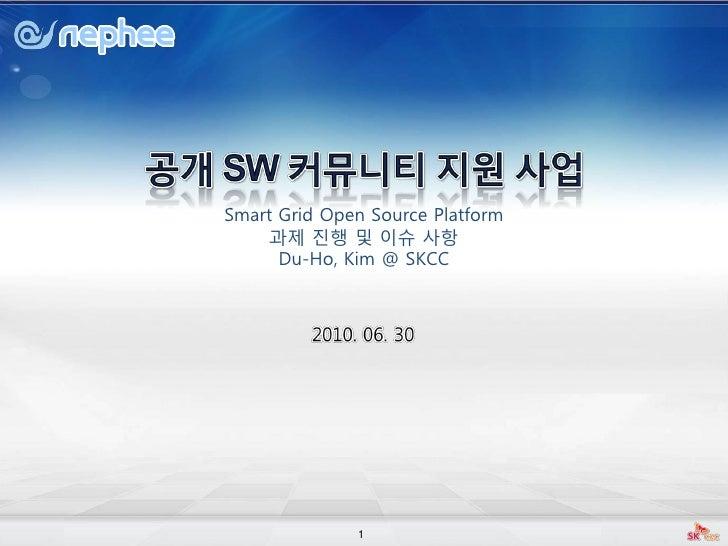 2010 nephee 01_smart_grid과제진행및이슈사항_20100630_kimduho
