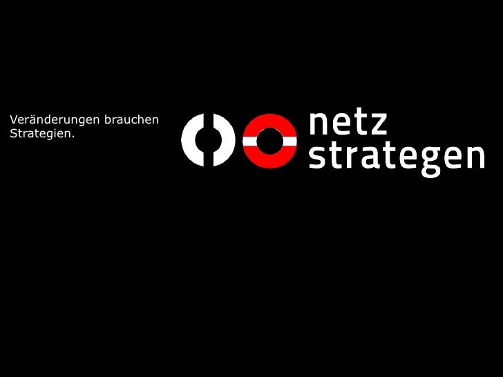 2010 netzstrategen online potenzial-check