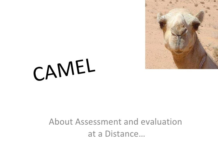 CAMEL About Assessment and evaluation  at a Distance…