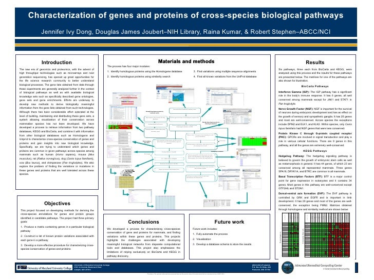 Characterization of genes and proteins of cross-species biological pathways