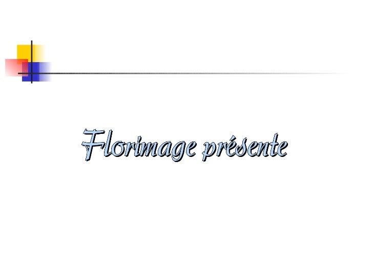 2011 01-18 - bd=tres belle-descente_de_la_dordogne-p