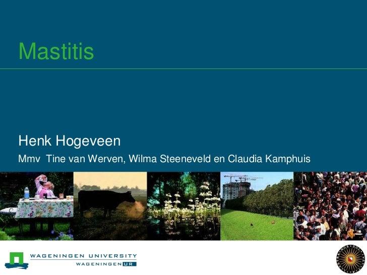 Mastitis<br />Henk Hogeveen<br />Mmv Tine van Werven, Wilma Steeneveld en Claudia Kamphuis<br />