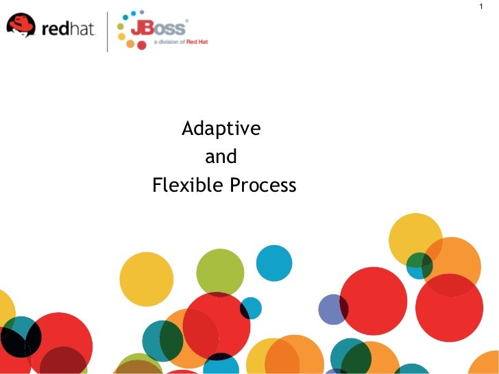 Adaptive  and  Flexible Process