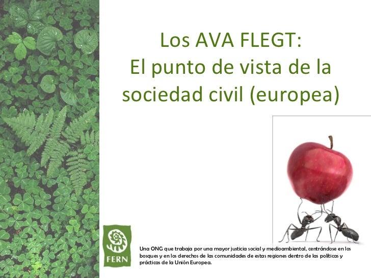 Una ONG que trabaja por una mayor justicia social y medioambiental, centrándose en los bosques y en los derechos de las co...