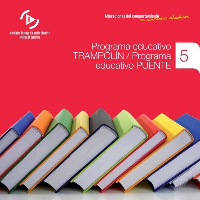 Programa educativo TRAMPOLÍN / Programa educativo PUENTE