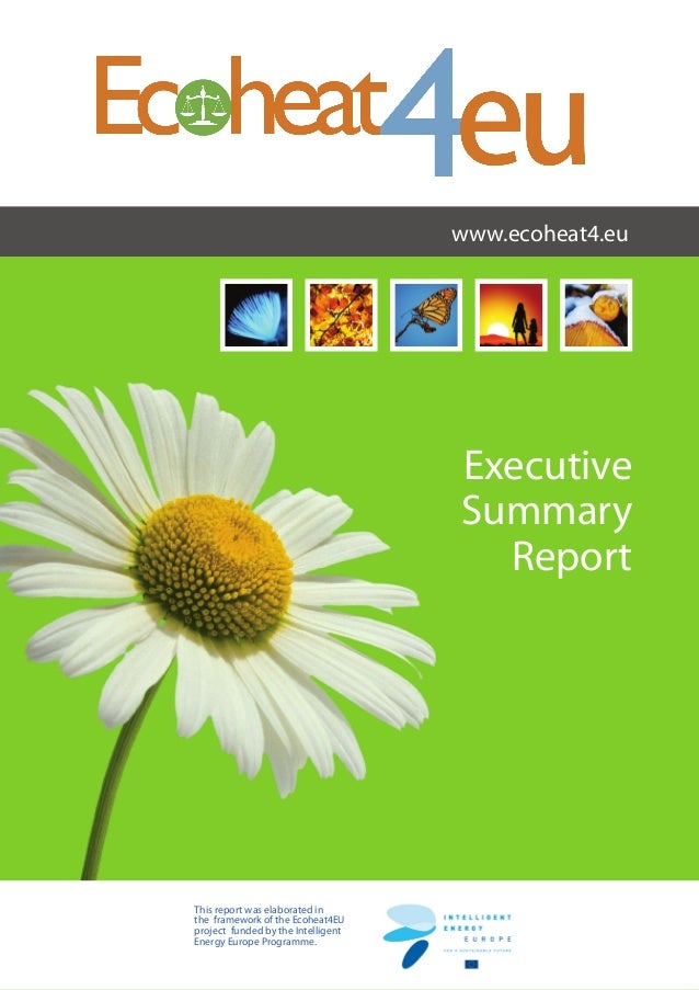 Executive Summary Report www.ecoheat4.eu This report was elaborated in the framework of the Ecoheat4EU project funded by t...