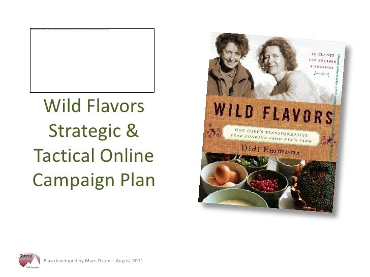 Wild Flavors Strategic & Tactical Online Campaign Plan<br />
