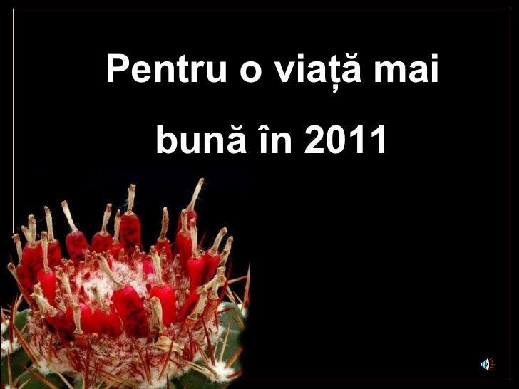 Pentru o viaţă mai bună în 2011