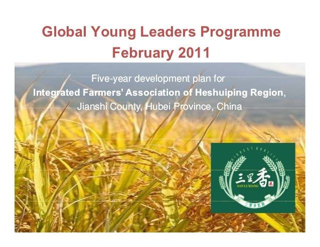 Global Young Leaders Programme          February 2011             Five-year             Five year development plan forInte...