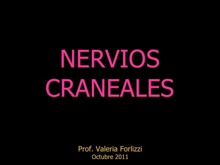 NERVIOSCRANEALES  Prof. Valeria Forlizzi      Octubre 2011