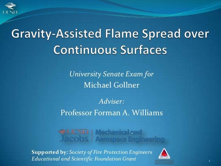 University Senate Exam for                     Michael Gollner                           Adviser:           Professor Form...