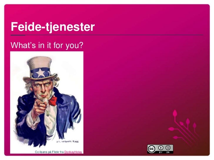 Feide-tjenester -- What's in it for you?