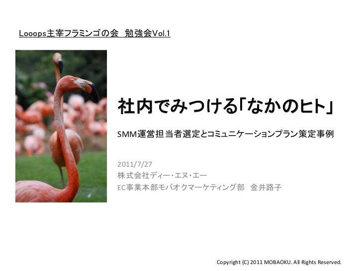 201107_Flamingo_kanai