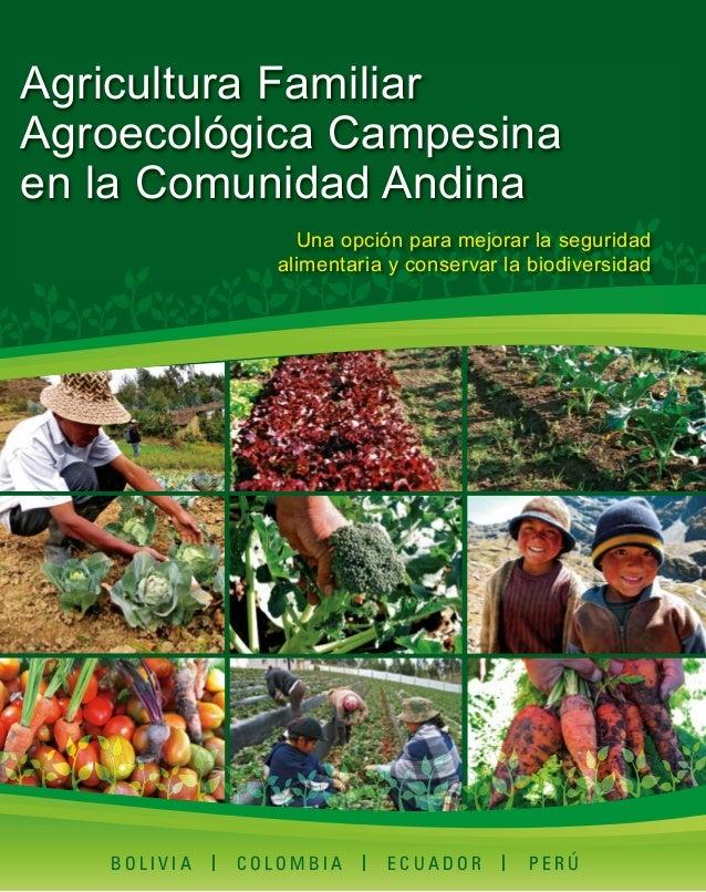 Agricultura Familiar Agroecológica Campesina en la Comunidad Andina Una opción para mejorar la seguridad alimentaria y con...