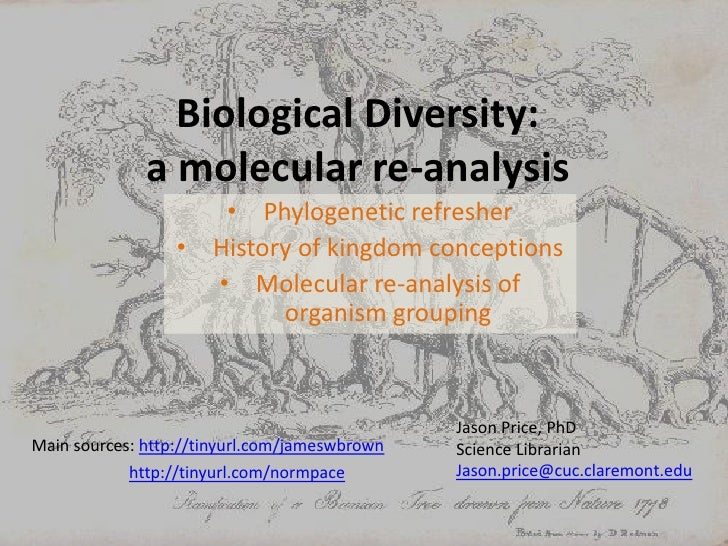 Biological Diversity: a molecular re-analysis<br /><ul><li>Phylogenetic refresher