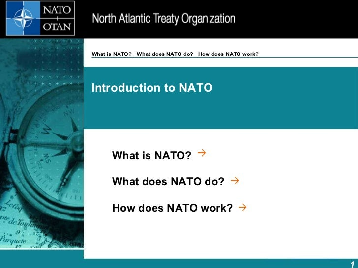What is NATO? What does NATO do? How does NATO work?