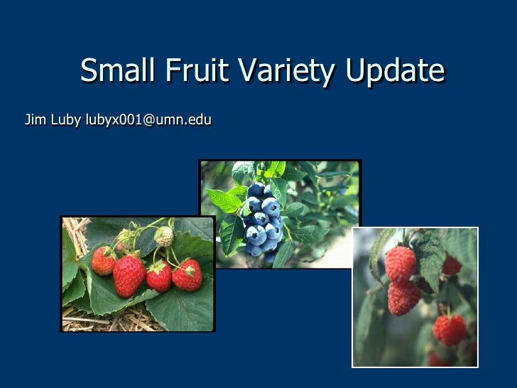 Small Fruit Variety UpdateJim Luby lubyx001@umn.edu