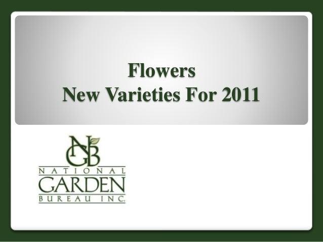 2011 NGB New Varieties-flowers