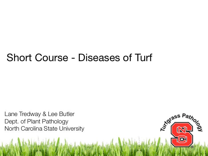 Short Course - Diseases of TurfLane Tredway & Lee ButlerDept. of Plant PathologyNorth Carolina State University