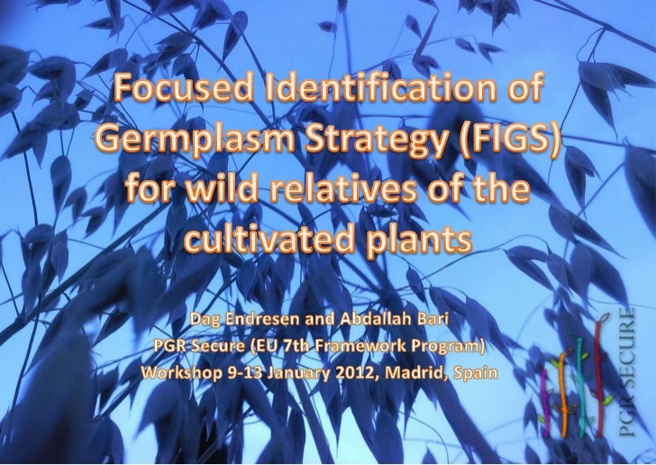 FIGS workshop in Madrid, PGR Secure (9 to 13 January 2012)