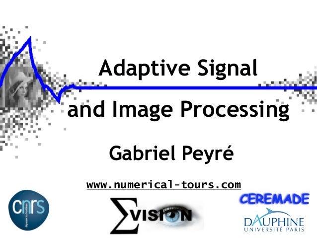Adaptive Signal and Image Processing