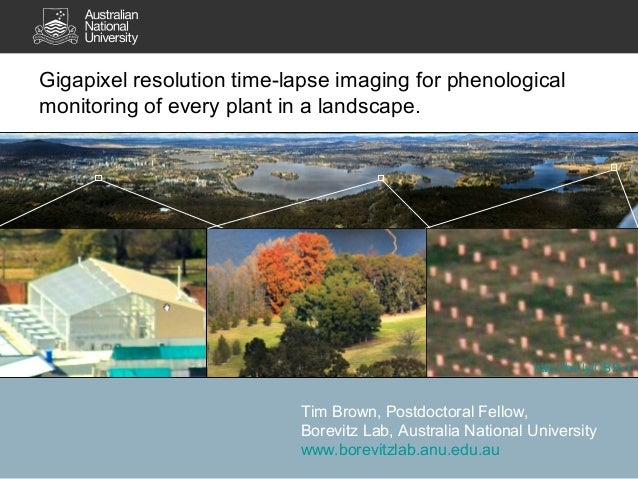Gigapixel resolution time-lapse imaging for phenologicalmonitoring of every plant in a landscape.                         ...