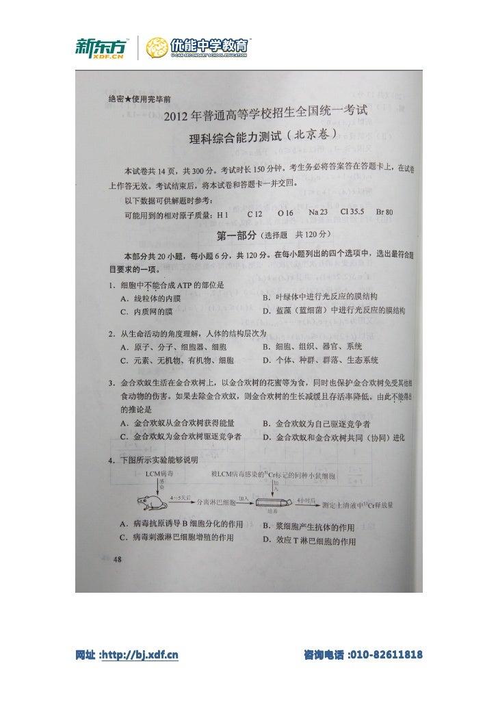 网址:网址:http://bj.xdf.cn   咨询电话:                      咨询电话:010-82611818