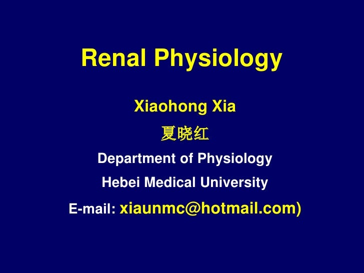 2012 4-16 renal physiology