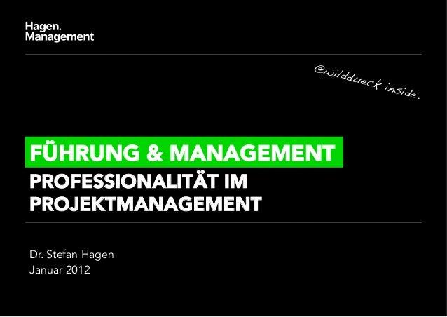 Professionalität im Projektmanagement