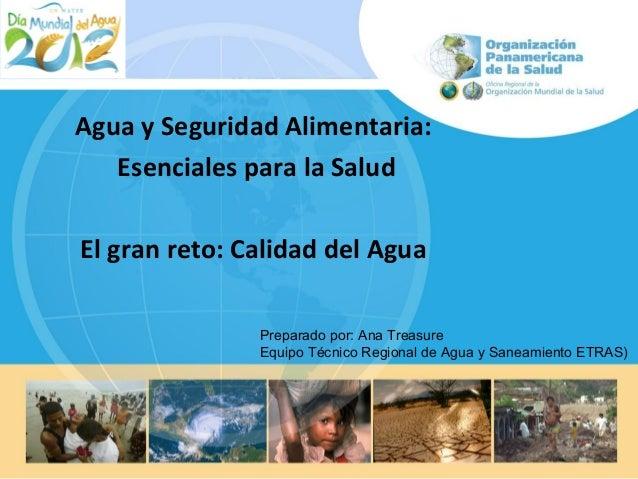 Agua y Seguridad Alimentaria: Esenciales para la Salud El gran reto: Calidad del Agua Preparado por: Ana Treasure Equipo T...