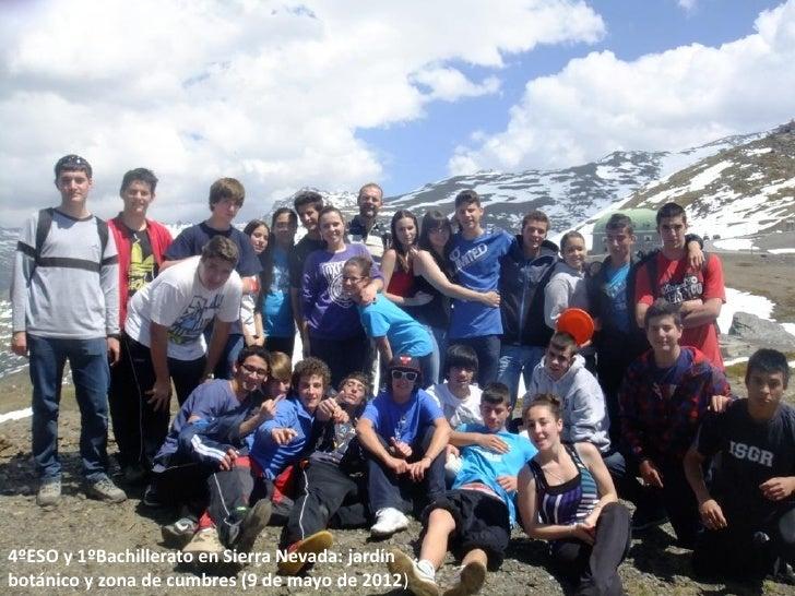 4ºESO y 1ºBachillerato en Sierra Nevada: jardínbotánico y zona de cumbres (9 de mayo de 2012)