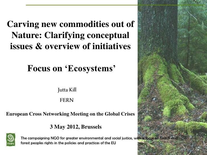 2012 05 european crossnetworking mtg financialisation of nature