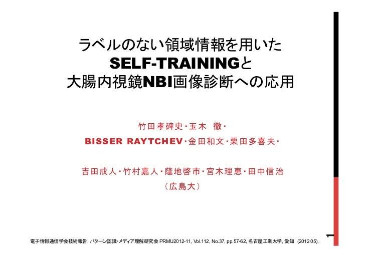 SELF-TRAINING       NBIBISSER RAYTCHEV,          PRMU2012-11, Vol.112, No.37, pp.57-62,   ,   (2012 05).