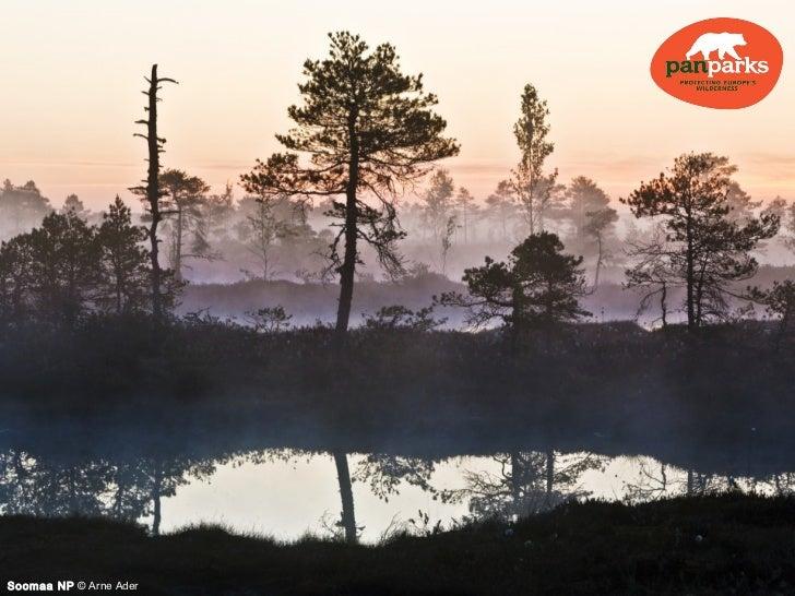 Soomaa NP © Arne Ader